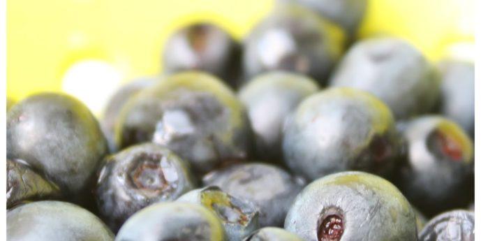 Przepis na powidła jagodowe bez cukru.